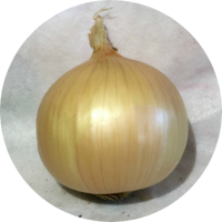 Cipolla Dolce